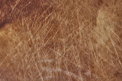 Tabla de cortar de madera en el fondo blanco foto de archivo libre de regalías