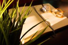 Tabla de la oficina de la visi?n superior, tabla con un cuaderno abierto, un ?lbum, vidrios, una planta verde Colores saturados b fotos de archivo libres de regalías