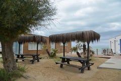 Tabla de la palma en la playa Imagen de archivo