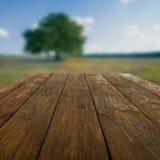 Tabla de madera al aire libre con el fondo hermoso del campo Fotografía de archivo