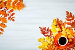 Tabla de madera blanca adornada con hojas de otoño y una taza de café Fondo del otoño con el espacio de la copia Imágenes de archivo libres de regalías