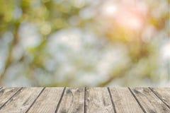 Tabla de madera con el fondo del parque de naturaleza del otoño usado para los productos de la exhibición imagen de archivo libre de regalías