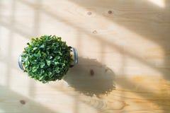 Tabla de madera con la flor artificial en el pote en la sala de estar fotos de archivo