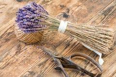 Tabla de madera de la lavanda al lado de sus tijeras Foto de archivo libre de regalías