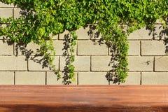 Tabla de madera vacía al lado de una pared de ladrillo En la pared son las uvas salvajes Fotografía de archivo libre de regalías