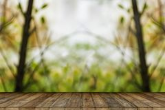 Tabla de madera vacía con los parques borrosos en el fondo imagen de archivo
