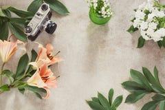 Tabla del escritorio del vintage con la cámara y la flor Visión superior con el espacio de la copia Concepto creativo femenino Imagen de archivo libre de regalías