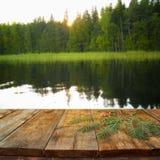 Tabla del tablero de madera del vintage delante del paisaje abstracto soñador del bosque Fotos de archivo
