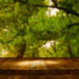 Tabla del tablero de madera del vintage delante del paisaje soñador del bosque del extracto del otoño Imágenes de archivo libres de regalías