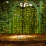 Tabla del tablero de madera del vintage delante del paisaje soñador del parque del extracto del otoño Imagenes de archivo