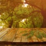 Tabla del tablero de madera del vintage delante del paisaje soñador del parque del extracto del otoño Imagen de archivo