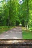 Tabla del tablero de madera del vintage delante del paisaje soñador y abstracto del bosque Fotografía de archivo