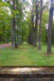 Tabla del tablero de madera del vintage delante del paisaje soñador y abstracto del bosque Imagenes de archivo