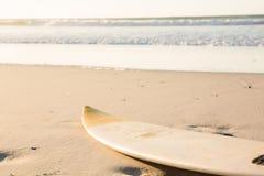 Tabla hawaiana en orilla en la playa imagen de archivo