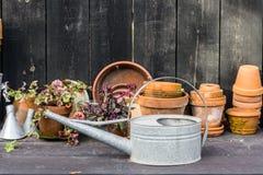 Tabla idílica romántica de la planta en el jardín con los potes, los utensilios de jardinería y las plantas retros viejos de la m Imagen de archivo libre de regalías