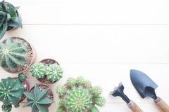 Tabla que cultiva un huerto de la endecha plana con las plantas del cactus en pote y jardín a Fotos de archivo libres de regalías