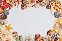 Tabla texturizada de madera con el marco de las cáscaras del mar Foto de archivo libre de regalías