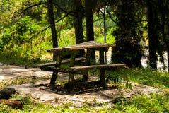 Tabla vieja en el bosque Imagenes de archivo