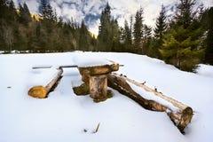 Tabla y bancos de madera en un claro en el bosque del invierno Imagen de archivo