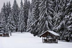 Tabla y bancos de madera nevados en bosque Foto de archivo libre de regalías