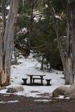 Tabla y silla en la nieve Fotos de archivo libres de regalías