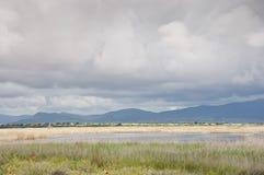 Tablas de Daimiel National Park, Spain Stock Photos