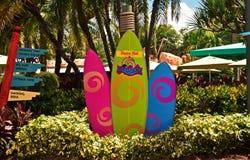 Tablas hawaianas coloridas en Seaworld Aquatica foto de archivo libre de regalías