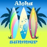 Tablas hawaianas coloridas fijadas, ejemplo Fotografía de archivo