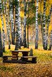Tablas y bancos de madera en el bosque del otoño Fotos de archivo