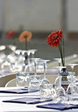 Table. Covered with a table. Outdoor restaurant. Aster in vase Royalty Free Stock Photos
