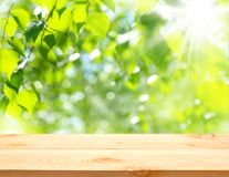 Table against a background of foliage. Stock Photos