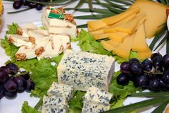 Table of assorted cheeses. Table of various assorted cheeses Royalty Free Stock Photo