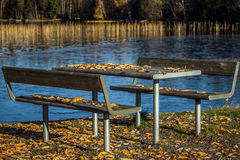 Table and Benches with Leaves Stock Image