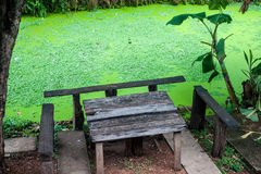 Table, benches and a swamp Royalty Free Stock Images