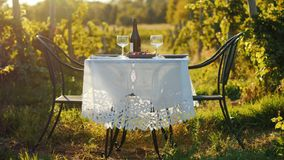 A table with a bottle of wine and tails stands against the background of a vineyard. Place for romantic dates and wine. Tasting royalty free stock photos