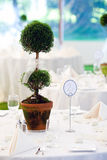 Table centerpiece. A wedding table in white with a large sculptured centerpiece Stock Photos