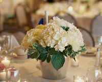 Table centerpiece. Centerpiece of white hydrangea at wedding reception dinner Royalty Free Stock Photos