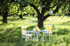 Table and chair in park. Decor with lemon on table Stock Images
