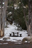 Table and Chair in the Snow Royalty Free Stock Photos