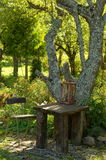 Table chair under tree in garden Royalty Free Stock Image