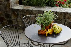 Table chairs gourds Stock Photo
