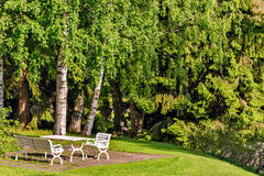 Table and chairs on lawn in garden Royalty Free Stock Image