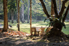 Table and chairs in National park lawn Stock Photos