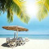 Tropical beach Stock Photo