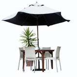 Table, Chairs, Plant and Umbrella Stock Photo