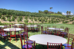 Table and Chairs in Vineyard. Many tables and chairs are set up on grass in a vineyard Royalty Free Stock Photos