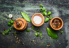 Table or cooking seasoning in wooden bowls on rustic background. Top view Royalty Free Stock Photography