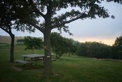 Table de pique-nique au coucher du soleil Photo stock