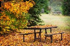 Table de pique-nique avec des lames d'automne Photographie stock libre de droits