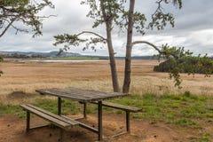 Table de pique-nique sur Tamar Island offrant une vue scénique au-dessus de Tamar Island Wetlands photo stock